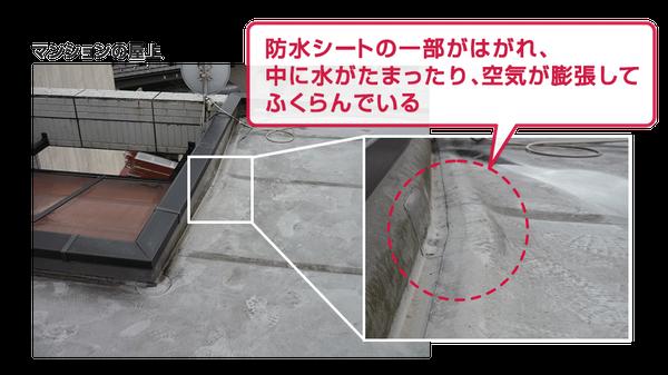 マンション屋上の防水シートが剥がれて、屋上の床が膨らんでいるイメージ