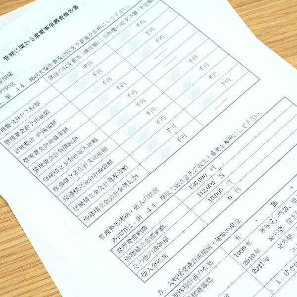 管理に係わる重要事項調査報告書のイメージ